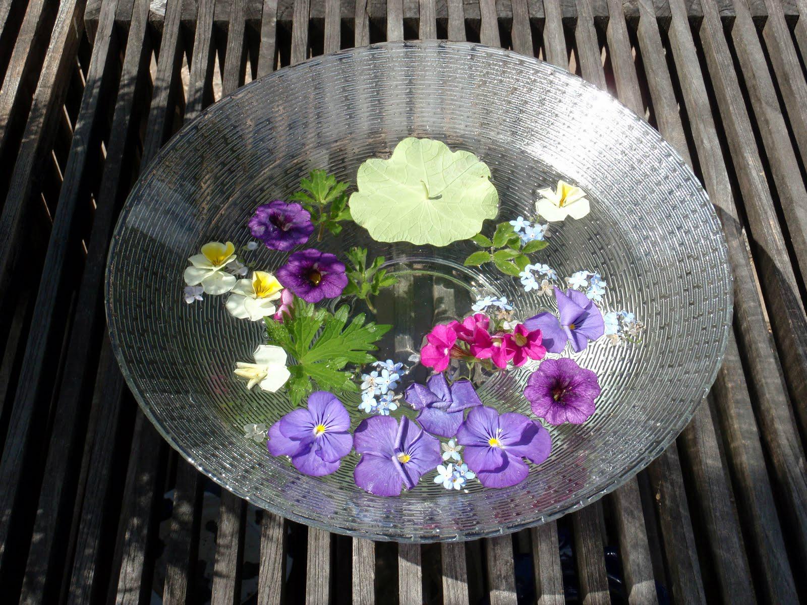 bloemen op de loopplank